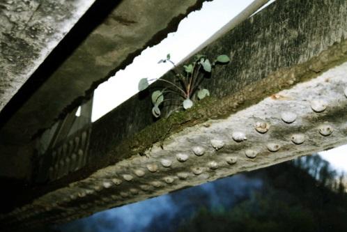 паспорт мостового сооружения образец - фото 8